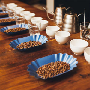 Join us for our Coffee Cuppings