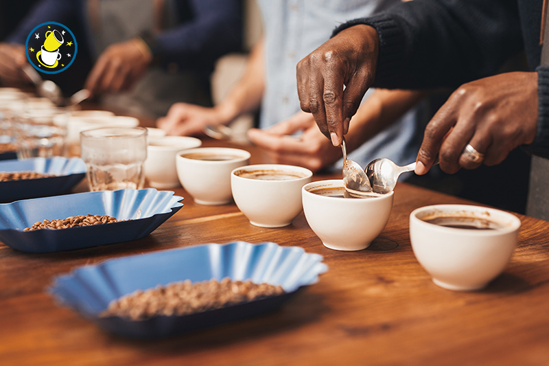 toomers_coffee_roasters_cupping