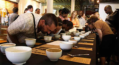 toomers_coffee_roasters_cupping_group