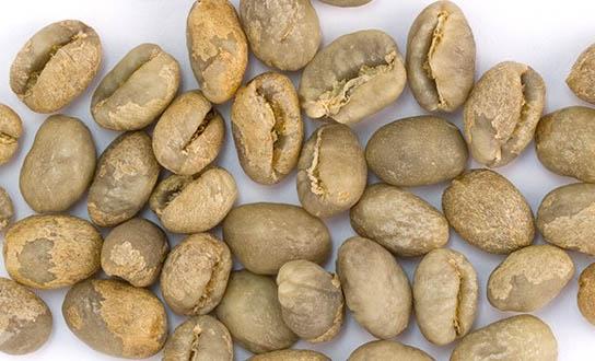 Buy Tanzanian Coffee